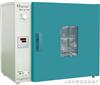 DHG-9123电热恒温鼓风烘箱
