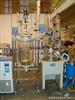 S212-50升双层玻璃反应釜