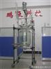 SF-50B中试生产型50L单层玻璃反应釜/提取设备