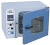 DHG101-1A鼓风干燥箱