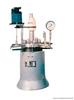 WHF实验用反应釜