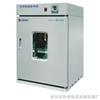 DNP-303-1 电热恒温培养箱