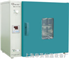 DHG-9123A电热恒温鼓风烘箱