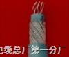 BJYC3V32/SA 聚乙烯绝缘钢丝铠装铝塑复合带屏蔽阻燃信号电缆BJYC3V32/SA 聚乙烯绝缘钢丝铠装铝塑复合带屏蔽阻燃信号电缆