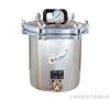 YXQ-SG46-280SA手提式煤電二用滅菌器YXQ-SG46-280SA