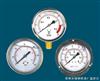 YTN-100 耐震压力表