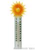 TP0704  园林(室内外)温度计