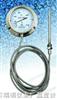 WTZ/WTQ=280 蒸汽/气体全不锈钢防腐型压力式温度计