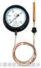 WTZ/WTQ-280、288 蒸气/气体压力式温度计