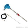 XH-106 热电偶与热电阻