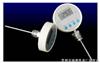 CX-WDJ200A型温度计  电子Z高Z低温度计