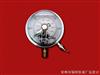 YNXC-100/150 耐振电接点压力表