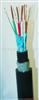 鐵路信號電纜-鎧裝型鐵路信號電纜-耐寒性鐵路信號電纜鐵路信號電纜-鎧裝型鐵路信號電纜-耐寒性鐵路信號電纜