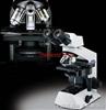 CX21-BIM双目生物显微镜/日本OLYMPUS显微镜