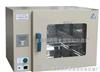 DHG-9070 电热鼓风干燥箱
