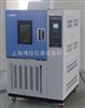 HS010恒定湿热试验箱/高温试验箱/低温试验箱