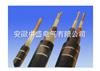 70℃电机引接软电缆(电缆)