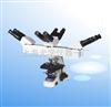 XSP-16A教学用生物显微镜 XSP-16A 上海光学仪器一厂