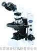 olympus 奥林巴斯CX41生物显微镜