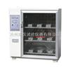 ZFX-10型冀东牌ZFX-10型自控砖瓦泛霜试验箱