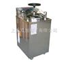 YXQ-LS100G立式压力蒸汽灭菌器YXQ-LS-100G灭菌器YXQLS-100G