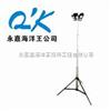SFW6110A *自动泛光工作灯–海洋王SFW6110A优惠报价-海洋王SFW6110A批发