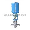 ZRSX電動調節微小流量閥-電動調節閥
