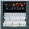 SR10006-3SR10006-3有纸记录仪