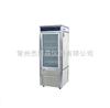 HWS-250恒温恒湿培养箱